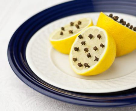 Lemon with cloves on blue plate