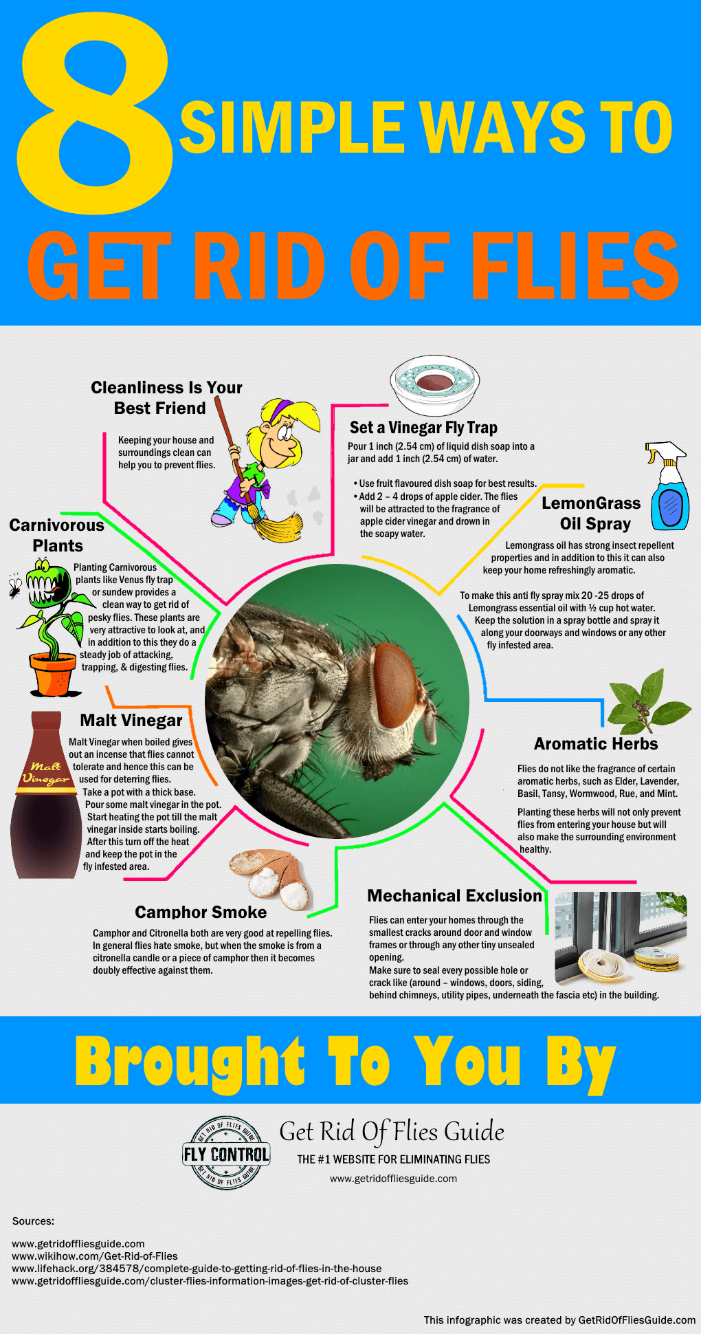 Getting Rid Of Flies Easily - Infographic