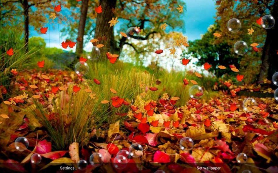 Autumn Falling Leaves Live Wallpaper Sonbahar 220 Cretsiz Wallpaper İndir Android Gezginler Mobil