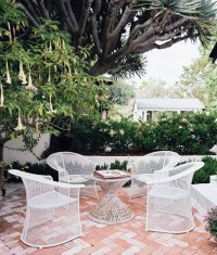 White Patio Furniture Under the Trumpet Flower Tree ...