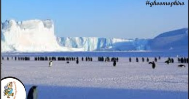 Antarctice