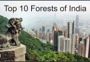 Top 10 Forests of India