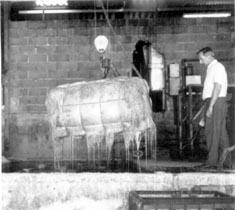 2. Nettoyage et hydratation des balles dans une cuve avant de commencer les opérations d'extraction.