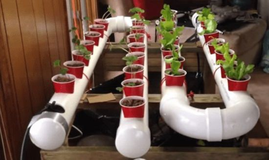 16 Unimaginable Diy Pvc Pipe Planters To Create A Pvc Garden Diy Arts And Crafts