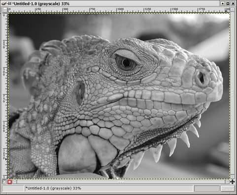 GIMP - Converting Color Images to BW