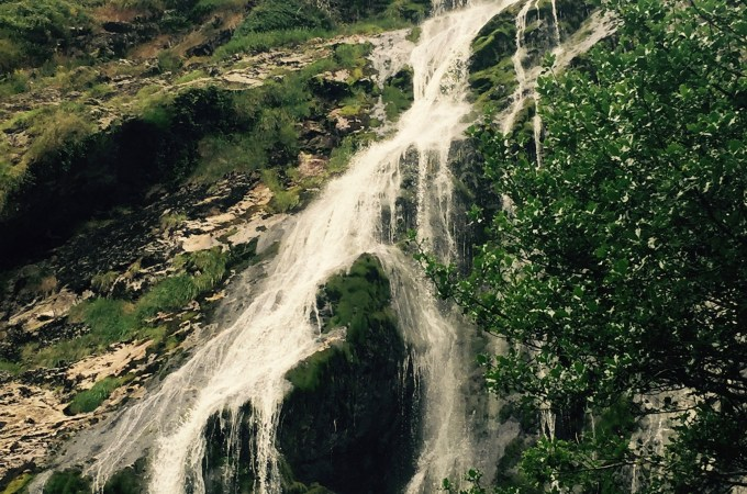 Powerscourt Gardens & Waterfall