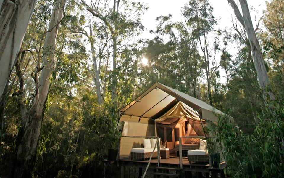 Deluxe Safari Tent at Paperbark Camp