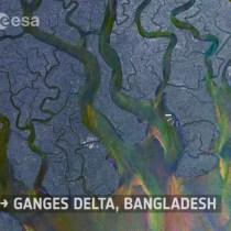 ganges delta bangladesh