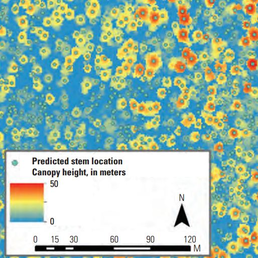 Figure 3. A gridded canopy height layer, at 1-meter spatial resolution, was derived from the light detection and ranging (lidar) data for areas in Grand Canyon National Park and Kaibab National Forest in northern Arizona. Orange/red shades indicate taller heights and individual tree crowns can be recognized. Points indicate lidar-inferred stem locations, for which canopy heights have been derived.