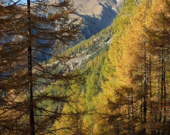 balade automne barcelonnette