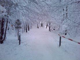 ski-fond-hautes-fagnes-00005