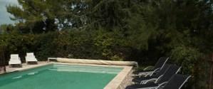 la piscine et la vue sur le parc ombragé privatif
