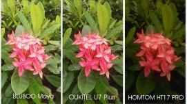 [Image: U7-Plus-camera-vs-bluboo-maya-vs-homtom-...=271%2C152]