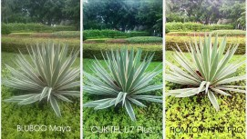 [Image: U7-Plus-camera-vs-bluboo-maya-vs-homtom-...=271%2C153]