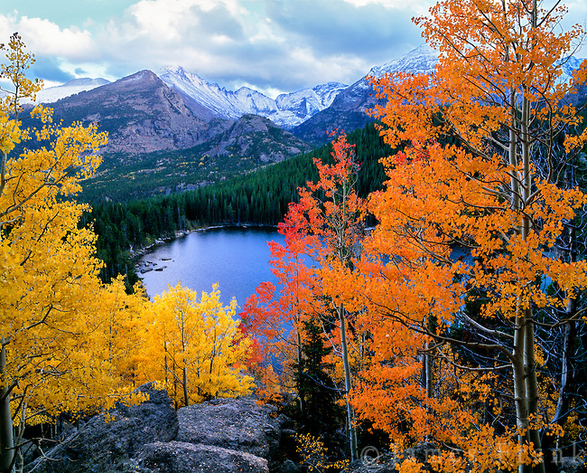 Birch Tree Fall Wallpaper Close Up Best Five Fall Hikes In The Rocky Mountains Gnptg