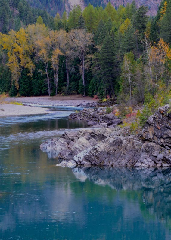Wild and Scenic 50 Years on the Middle Fork of the Flathead River