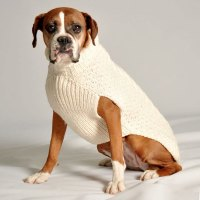 Chilly Dog Cable Knit Dog Sweater- Natural | Dog Sweaters ...