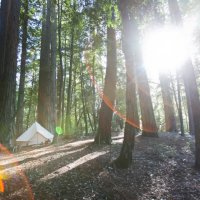 Best Bay Area Glamping