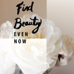 find beauty even now