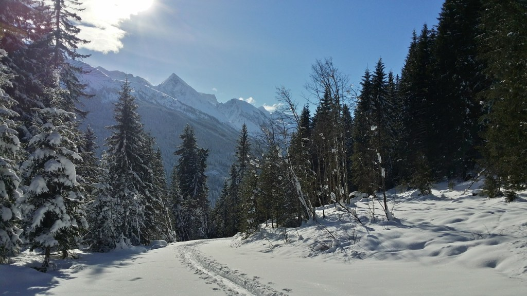 backcountry-skiiing-587362_1280