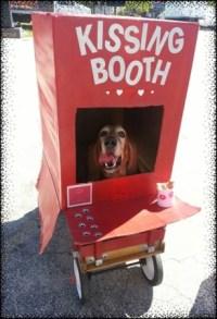 dog in kissing booth halloween costume   Global Animal