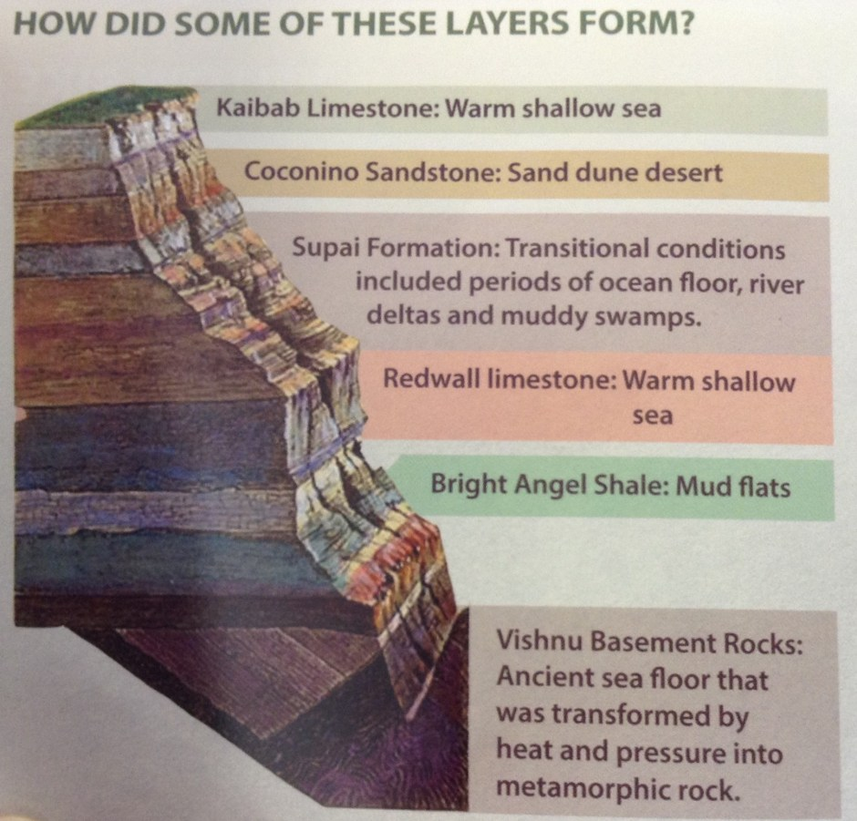 The different layers of rock