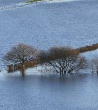flood-profile
