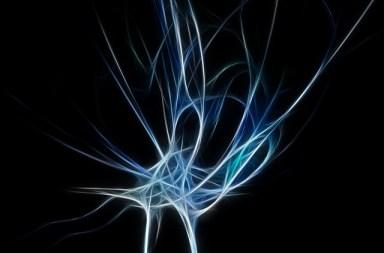 neural_pathway