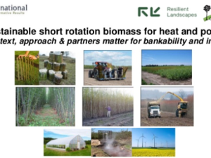 Sustainable short rotation biomass for heat and power