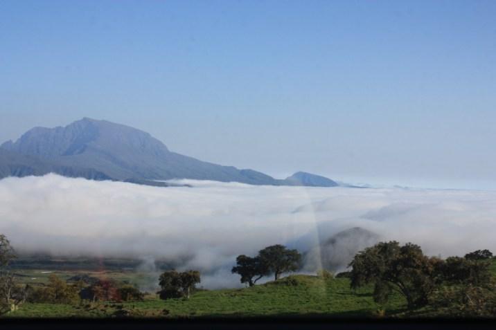 Plaine des Cafres - Ile de la Réunion