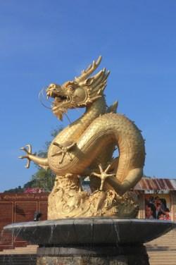 dragon - Phuket