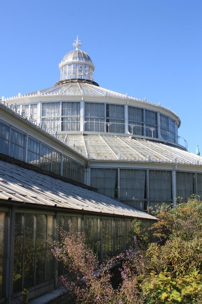 serre - jardin botanique - copenhague