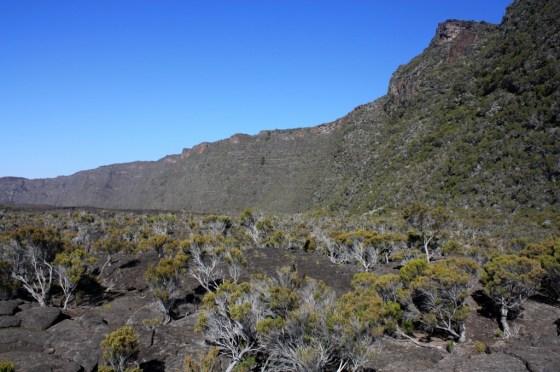 Enclos - volcan - ile de la Réunion