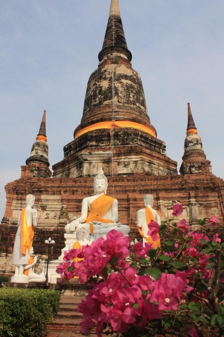 Bouddha wat - Ayutthaya
