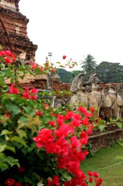 Ayutthaya - Thailande