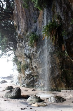Cascade Cathedral Cove - Coromandel