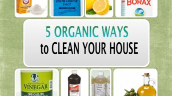 5 NATURAL WAYS TO CLEAN YOUR HOUSE CHEMICAL-FREE