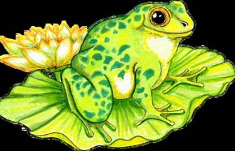 croac-sapo-lotus-gnosisonline