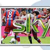 Sky Go Live Fußball-Bundesliga via MobileTV auf dem Android Smartphone!