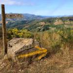 So You Want to Walk the Camino de Santiago