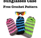 Summer Spike Sunglasses Case - Free Crochet Pattern