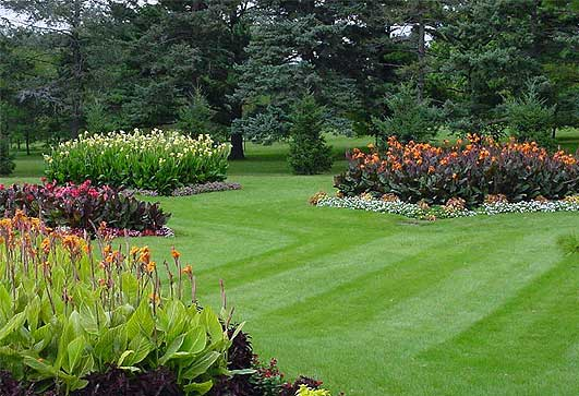 Lawn Care Rockford, Lawn Mowing Rockford, Rockford Lawn Mowing