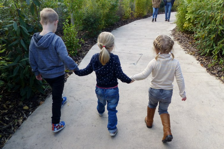 kids exploring The Enchantment of Chester Zoo