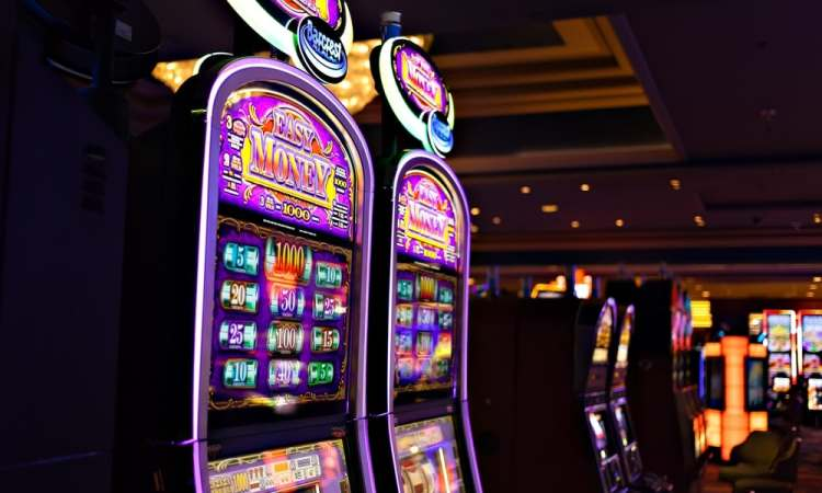 Win On Slot Machines Golden Acorn Casino San Diego