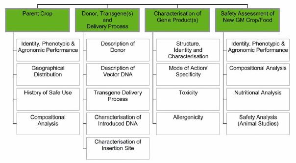 Allergen Risk Assessment Template – Network Assessment Template