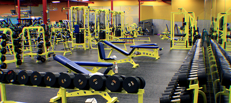Gold\u0027s Gym St Louis (Dorsett) in Maryland Heights MO