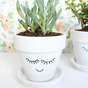 DIY Painted Face Plant Pots by Gold Standard Workshop