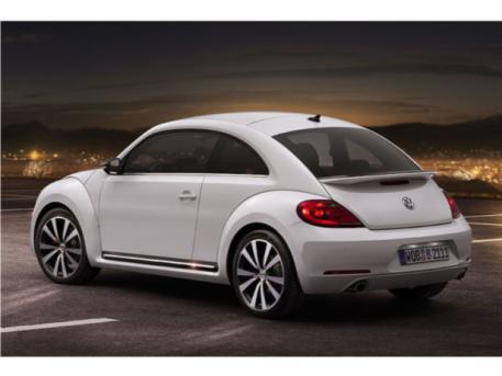 beetle 21th