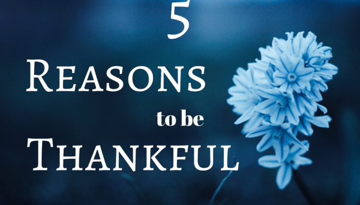 Gratitude: 5 Occasions to Show Appreciation