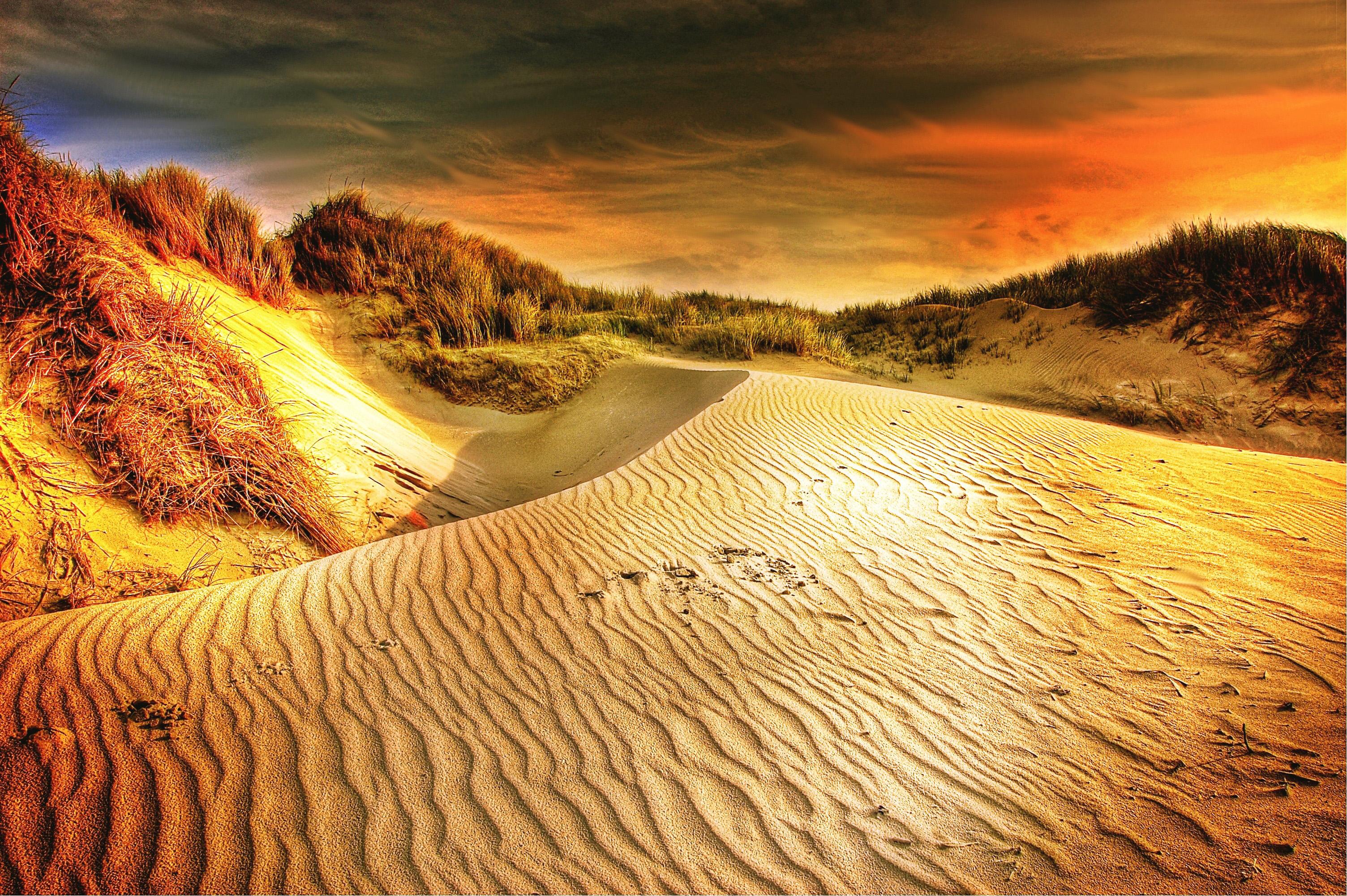 Desert Landscape Wallpaper Hd Desert And Sand Dunes Landscape Image Free Stock Photo